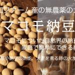 無農薬大豆&マコモで作る手前マコモ納豆作りWS日程